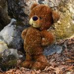 Der kleine Bär Fieps - Ostern
